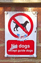 No dogs Royalty Free Stock Photo