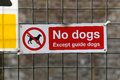 No dogs warning sign except guide dog Royalty Free Stock Photos
