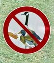 No feeding the bird sign Royalty Free Stock Photo
