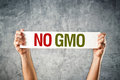 No gmo man holding banner with anti message Royalty Free Stock Photos