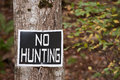 No hunting sign on tree Royalty Free Stock Images