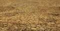 No life in arid soil. Royalty Free Stock Photo