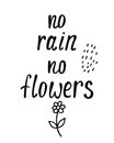 No rain no flowers. Inspirational quote about happy.