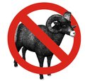 No sheep allowed Royalty Free Stock Image
