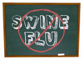No Swine Flu - Chalkboard Royalty Free Stock Photos