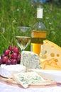 Ušlechtilý sýr a bílé víno
