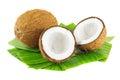 Noci di cocco Immagine Stock Libera da Diritti