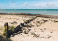 Noirmoutier island landscape, France Royalty Free Stock Photo