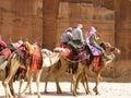 Nomads caravan in Petra Royalty Free Stock Image