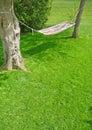 后院日晴朗吊床的春天 免版税图库摄影