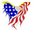 американский флаг облыселого орла Стоковая Фотография RF