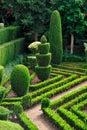植物的装饰丰沙尔庭院绿色公园 库存照片