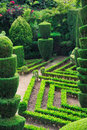 植物的装饰丰沙尔庭院绿色公园 图库摄影