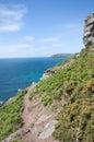 岩石海岸的路径 库存照片