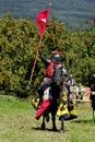马背中世纪的骑士 库存图片