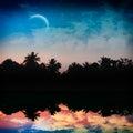 热带魔术的晚上 库存照片