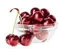 与对的静物画红色湿樱桃结果实 库存图片