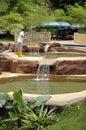 池塘重新创建 库存图片