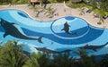 空中池游泳视图 免版税库存照片