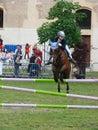 выставка лошади скача Стоковая Фотография