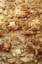 粗砺的石墙 库存图片