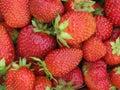背景草莓 免版税库存图片