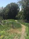 όμορφο φυσικό πεζοπορώ στην αγριότητα Στοκ εικόνες με δικαίωμα ελεύθερης χρήσης