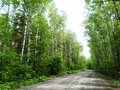 δρόμος μέσω των ? ασών Στοκ φωτογραφία με δικαίωμα ελεύθερης χρήσης