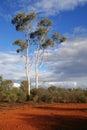 在内地澳洲 免版税库存照片