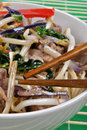 Noodle with beef and stir fry Royalty Free Stock Photo