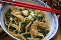 Noodles with spinach Stock Images