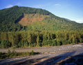 Nooksack River & Forest Clearcut Stock Images