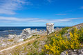 Nordic nature of gotland sweden fårö island limestone formations raukar on the coastline Royalty Free Stock Images
