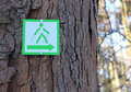 Nordic walking sign on a tree Royalty Free Stock Photo