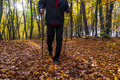 Nordic walking sport run walk motion blur outdoor person legs fo cultivating the figure of a man in the autumn in the forest Stock Photo