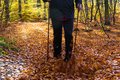 Nordic walking sport run walk motion blur outdoor person legs fo of man cultivating autumn in the forest Royalty Free Stock Photos