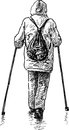 Nordic walking vector drawing of the person engaged in with sticks Stock Image