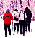 Nordic walking in winter the wintry park Stock Photos