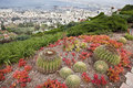 In the north of israel in the city of haifa on the slope of mount carmel are famous bahai gardens this is one of the most famous Stock Photography