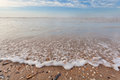 North sea waves ob sand beach with mollusk shells holland Stock Photography