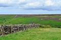 North York moors Yorkshire England Royalty Free Stock Photo