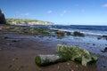 North Yorkshire Moors coast Royalty Free Stock Photo