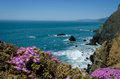 Northern California Coast Royalty Free Stock Photo