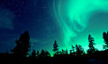 Northern lights aurora borealis over trees and stars Royalty Free Stock Photography