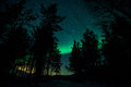 Northern lights in sweden forest a high resolution image of Royalty Free Stock Photo