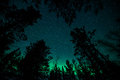 Northern lights in sweden forest a high resolution image of Stock Image