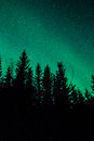 Northern lights in sweden forest a high resolution image of Royalty Free Stock Image