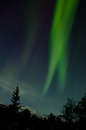 Northern lights vertical Royalty Free Stock Images