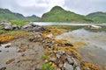 Norwegian fjord wild landscape Royalty Free Stock Photos