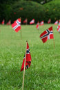 Norwegian flags in a garden Stock Image